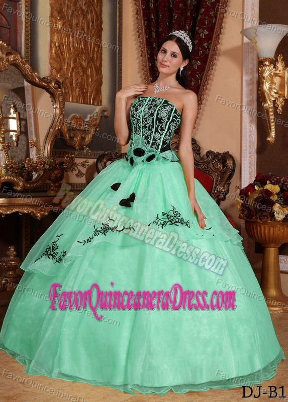 Strapless Floor-length Organza Embroidery Quinceanera Gown in Apple Green