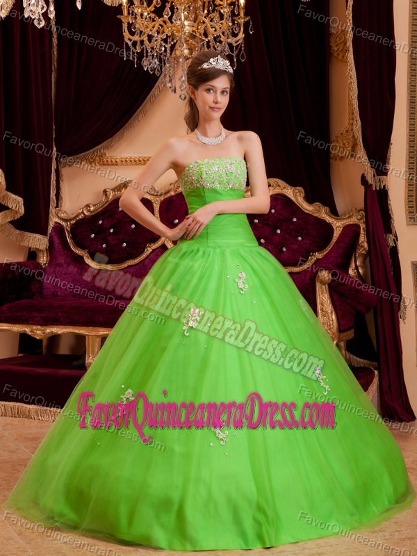 Spring Green Strapless Tulle A-line Appliques Sweet 15 Dresses for 2014