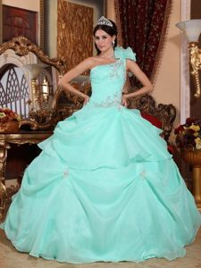Apple Green Ball Gown Organza Quince Dresses with Appliques and One Shoulder