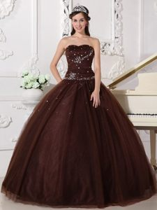 Beautiful Lace-up Long Tulle Sweet Sixteen Dresses in Brown with Rhinestones