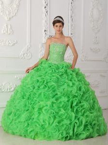 Beaded Strapless Green Organza Ruffled Quinceanera Gown Dresses for Sale