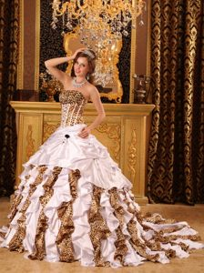 Memorable Court Train Leopard Print Taffeta Quinces Dresses in Multi-color